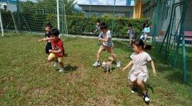 강아지와 함께 뛰어요!